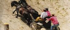 1993-Saumur